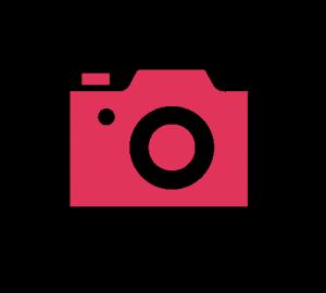 app-photo-rose